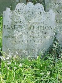 Haley Horton
